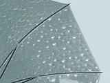 Happy Rain transparante paraplu - Giraffe_